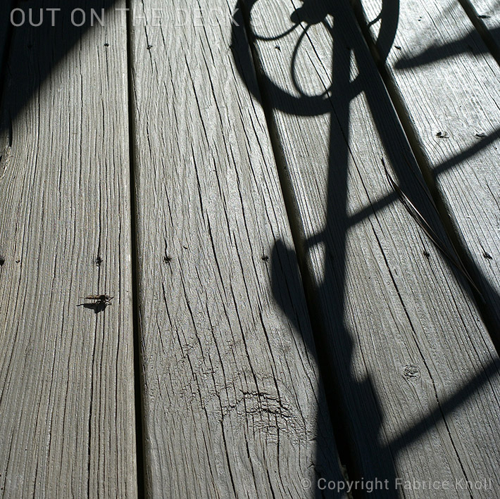 out-on-the-deck-3